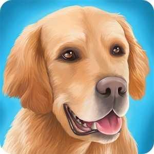 DogHotel - Мой отель для собак