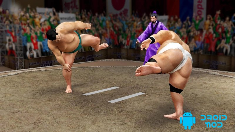 Sumo Stars Wrestling 2018: World Sumotori Fighting