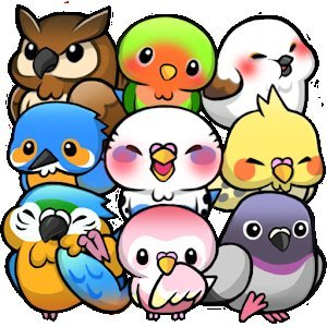 Bird Life -Жизнь птиц